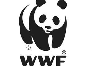 New Blood Awards 2015 Recap - The WWF Challenge
